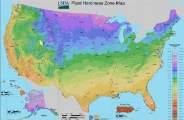 USDA Cold Hardiness Zone Map