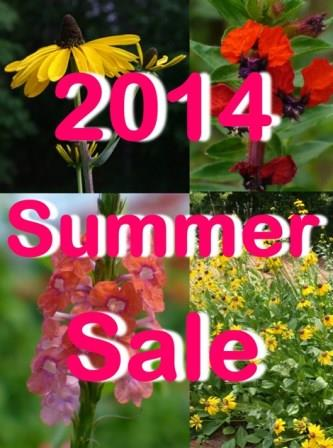 2014 Summer Sale - Almost Eden