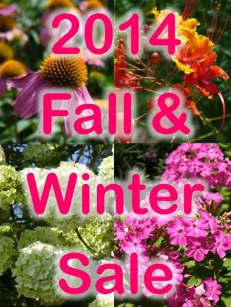 Click here to see what's on sale this winter!