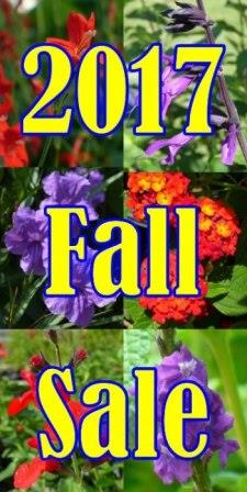 2017 Fall Sale - Over 150 great plants marked down for fall!